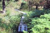Natuurreservaat Plateau de Tailles