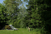 camping Chalet du Mossele