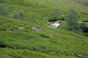 Wandeling omgeving Glencoe