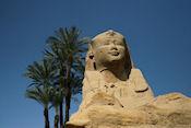 Een van de sphinxen langs de laan naar Luxor Tempel