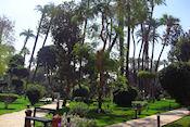 Tuin van Hotel Winter Palace