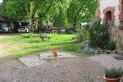 Binnenplaats camping  Ambiance Morvan