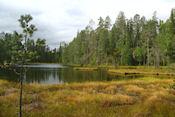 Kleine Berenroute in Oulanka Nat .Park