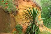 Rode aarde bij Roussillon