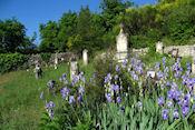 Begraafplaats bij het oude Condorcet