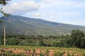 Uitzicht op Mt. Ventoux vanaf camping