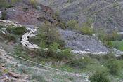 Schaapskudde onderweg bij Alós de Isil
