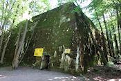 Ruïnes van de bunkers