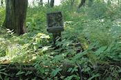 Voormalige Duitse begraafplaats
